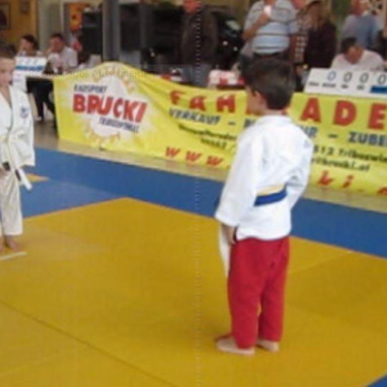 Florian Judo 2011